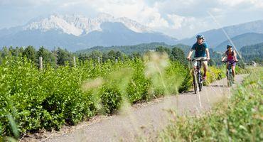 Pacchetto Bike 7 giorni