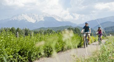 Settimana Mountainbike speciale Erica 7 giorni