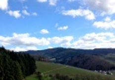 Saftige Wiesen und Schwarzwaldhöhen, üppige Obst- und Weingärten und dunkle Tannenwälder.Mit seinem milden und sonnigen Klima bietet das Glottertal zu jeder Jahreszeit ein ganz besonderes Flair.