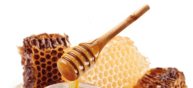 Honig-Traum-Angebot