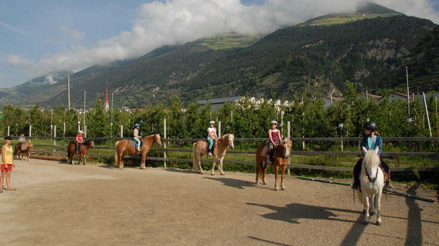 Pferdeerlebnis Vinschgau