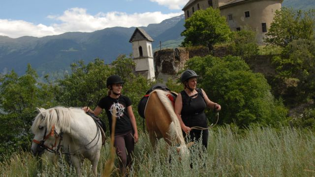 Horse riding experince in Val Venosta