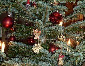 Weihnachtsarrangement 20. Dez. bis 27. Dezember 2015