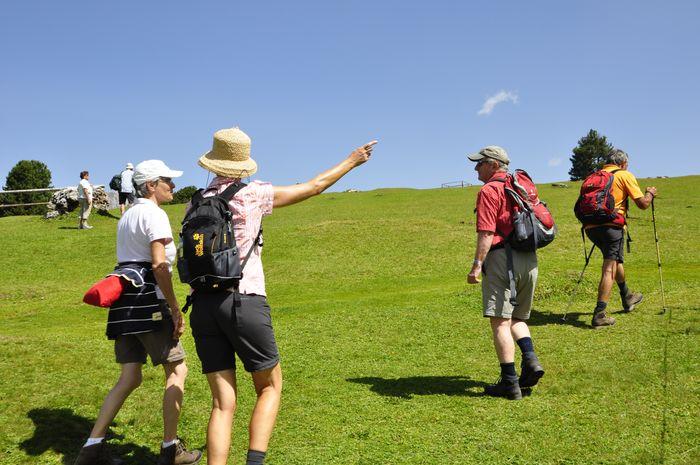 Wellness Week with Nordic Walking