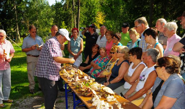 13th Mushrooms week at Quellenhof