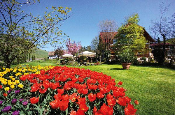 Blütenzauber im Durbachtal