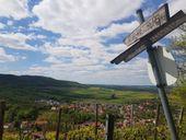 Wandern auf dem Steigerwald-Panoramaweg