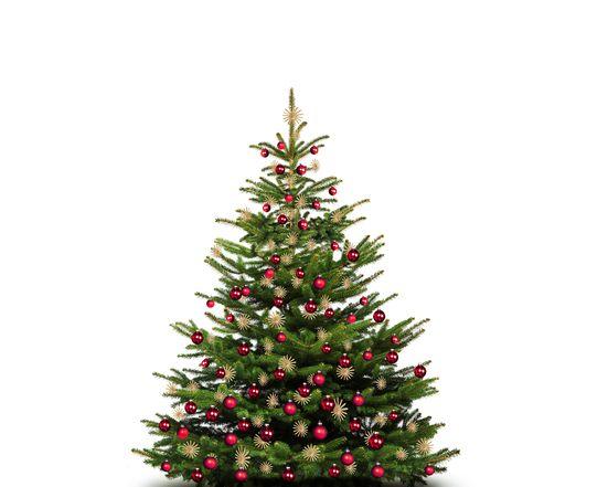 Friedliche Weihnachten | 5 ÜN