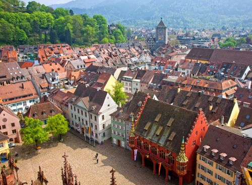 Fall in love with Freiburg