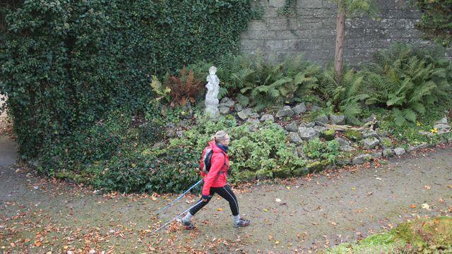 Nordic Walking & Mehr